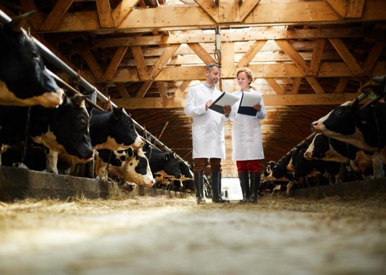 #25. Animal Scientists