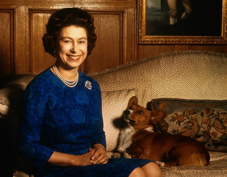 Queen Elizabeth II and Corgi at Sandringham