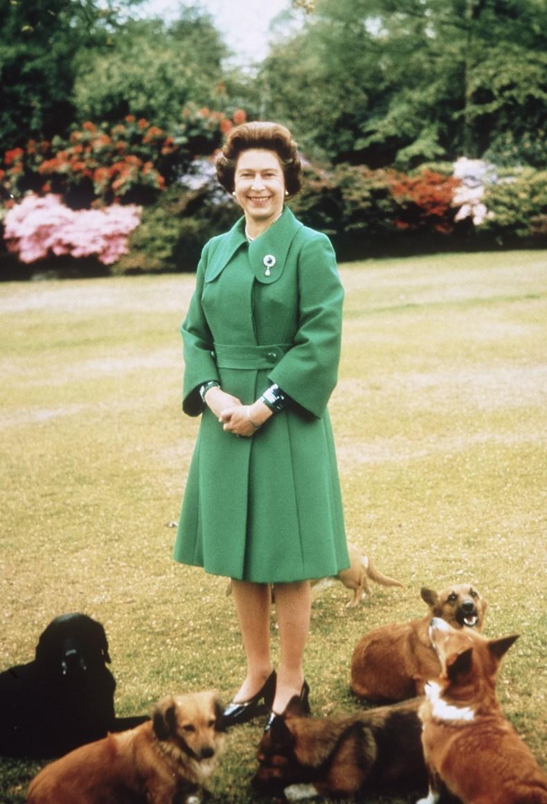 Queen at Sandringham With Corgis