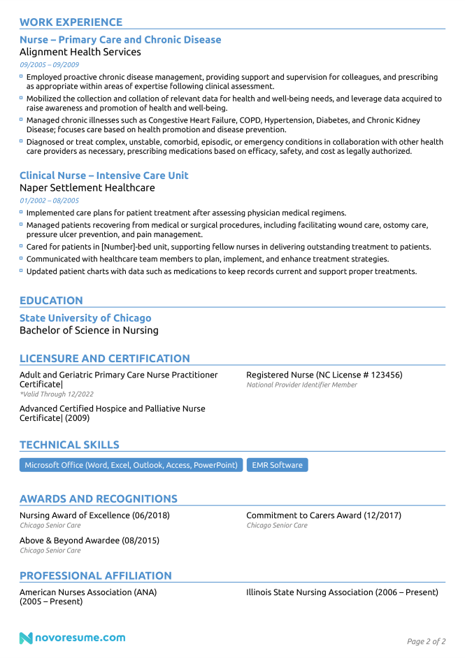 Nurse Resume Example How To Guide For