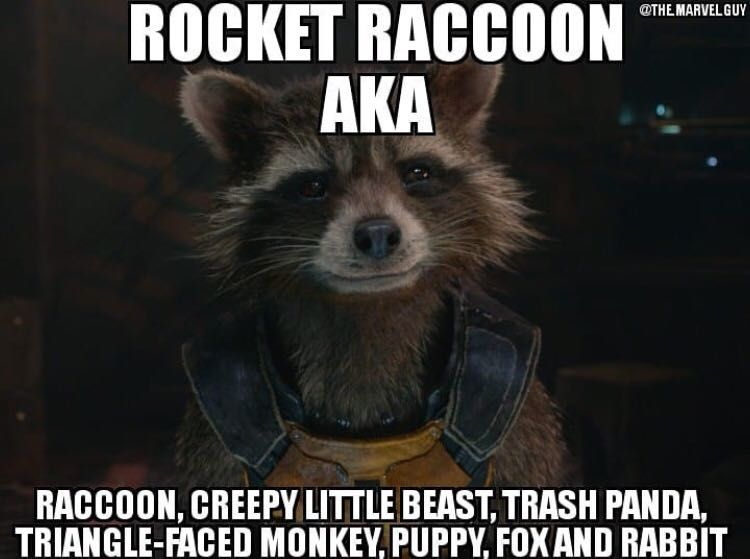 Marvel Funny Puns Pictures Memes And Quotes Rockets Many