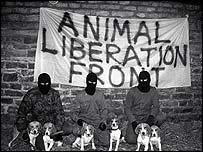 animal liberation front ile ilgili görsel sonucu