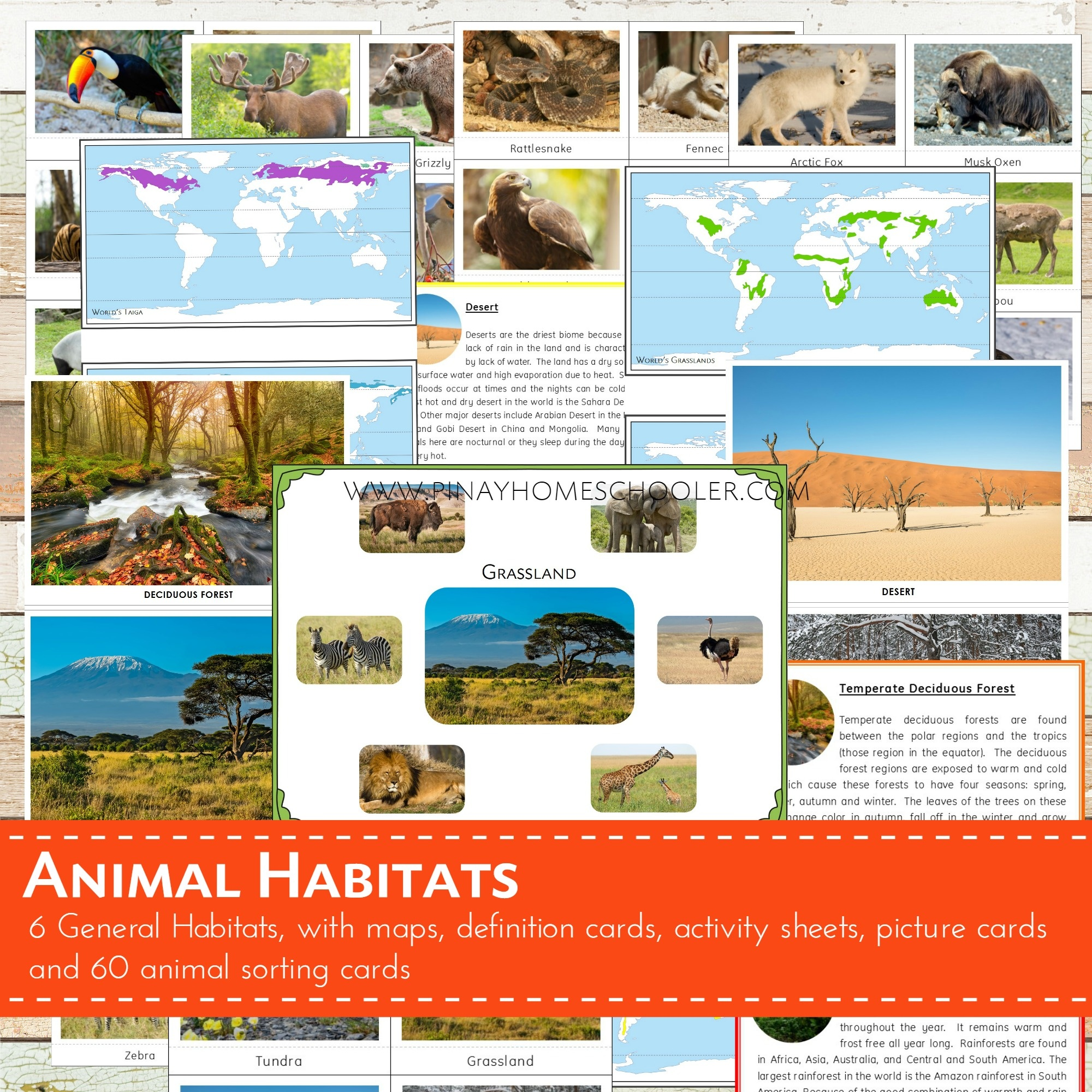 Animal Habitats Sorting Cards