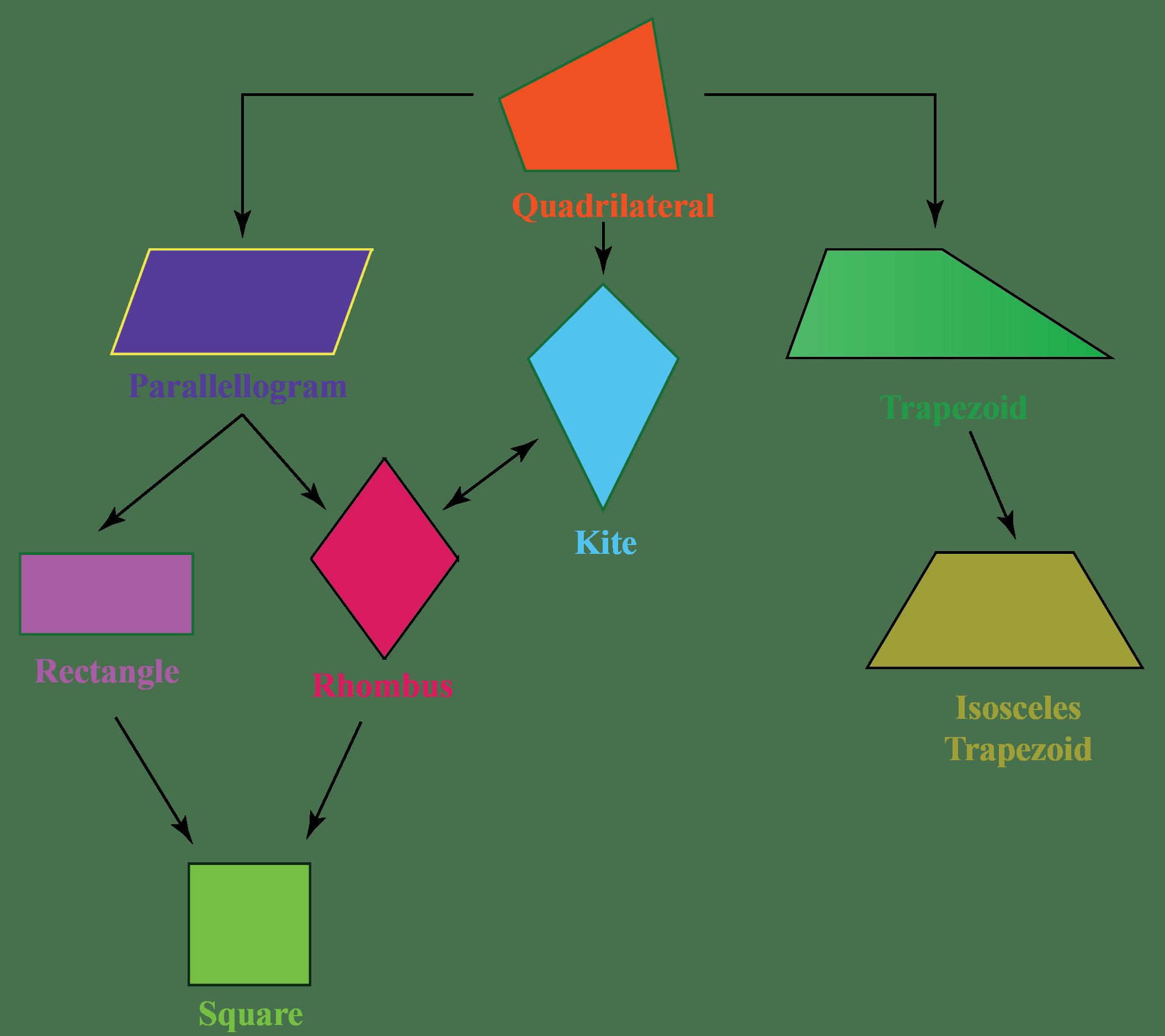 Quadrilaterals Types