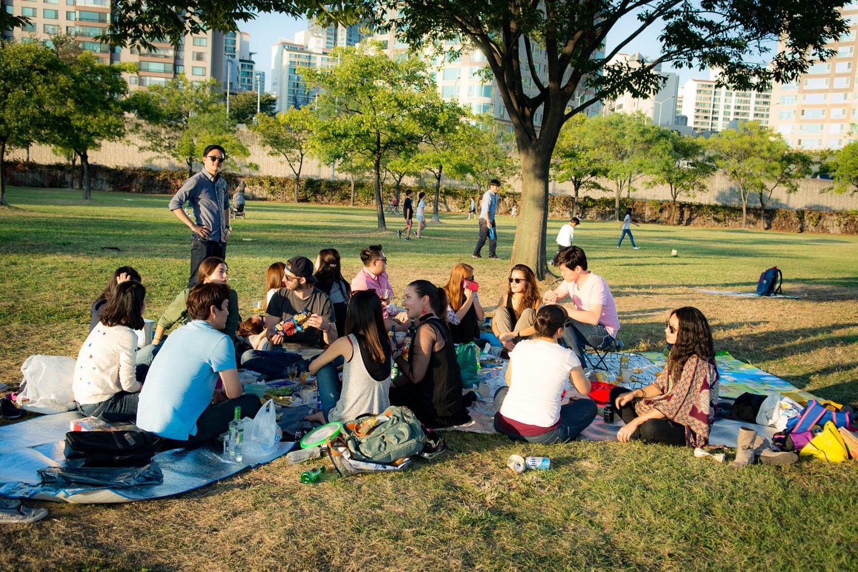 picnic-5