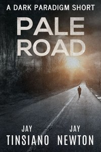 Pale Road by Jay Tinsiano
