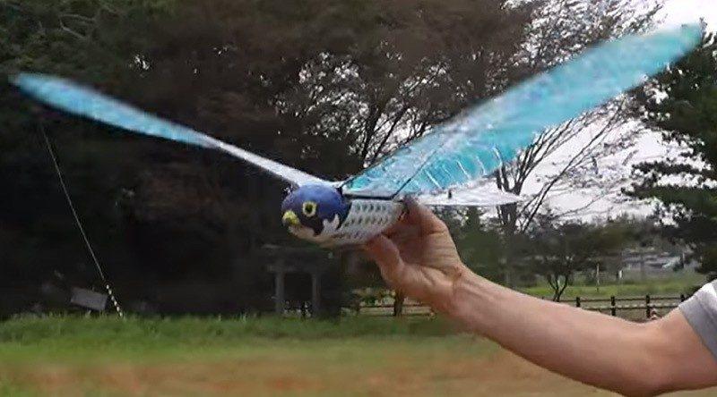Ornithopterbird_04