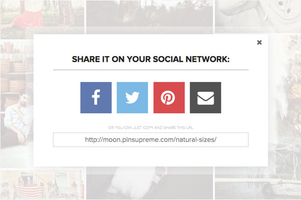 Wordpress template for photography with social networks sharing