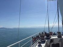 View from Wavedancer Port Douglas