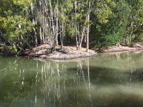 Spot the croc at Hartley's Lagoon