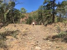 David taking photos walking Heysen trail