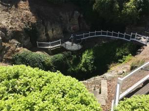 Mount Gambier garden