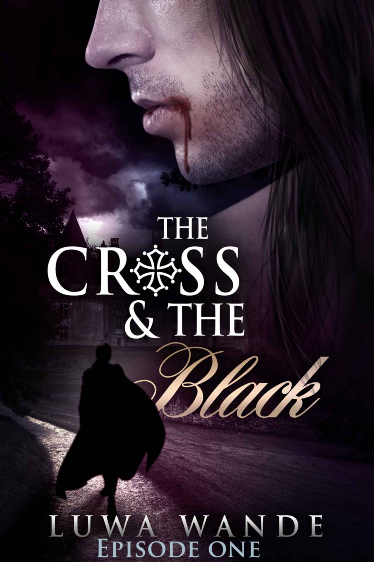 The Cross and the Black 1 by Luwa Wande