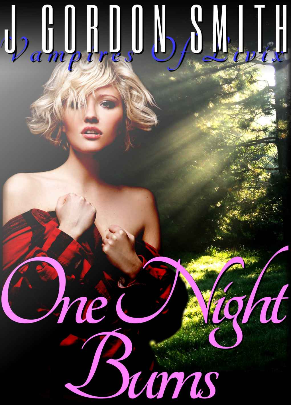 One Night Burns - J. Gordon Smith