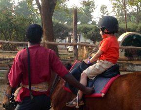 Embassy Riding School, Pony ride