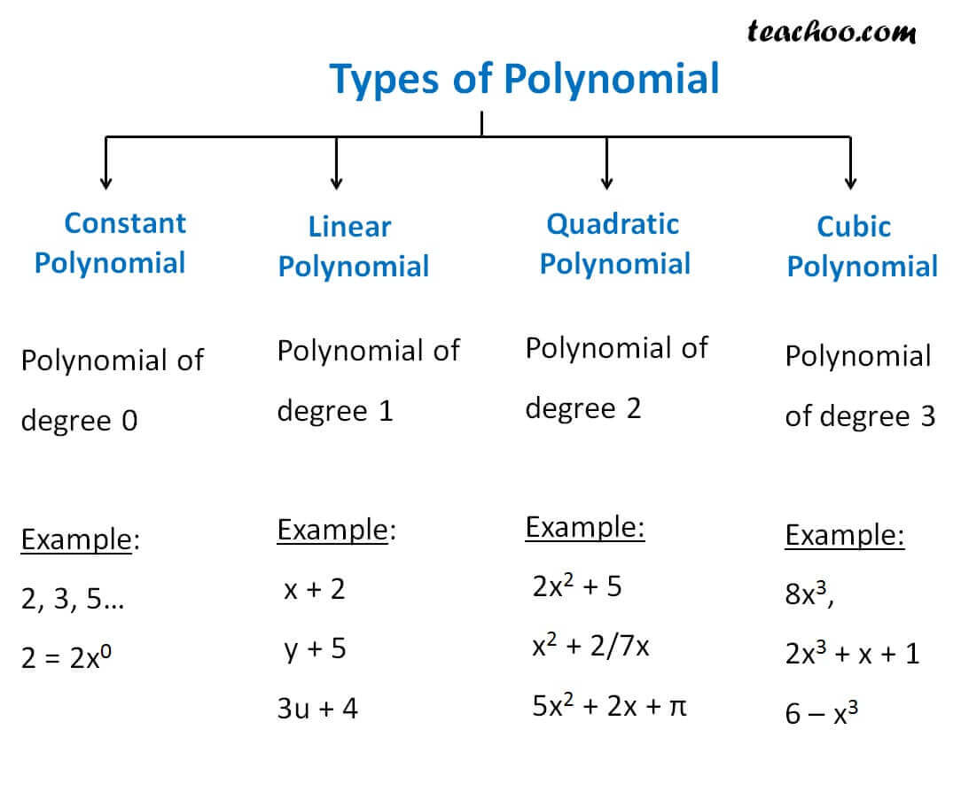 Differnet Types Of Polynomial