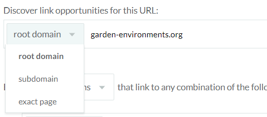 Choose between domain, subdomain or page