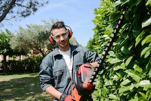 Taille-de-haie-jardinage-jardinage