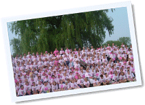 Breast cancer car donation