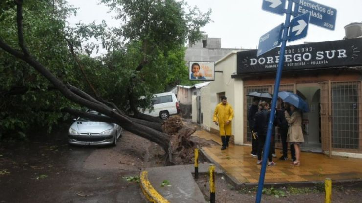 Árboles caídos y cortes de luz: así fue la fuerte tormenta que cayó sobre el Gran Mendoza