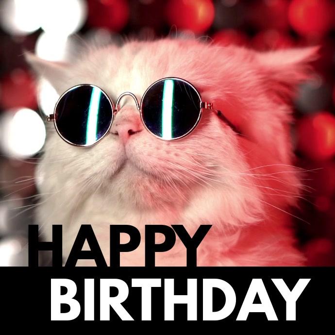 Happy Birthday You Cool Cat Make A Meme