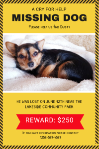 Make Missing Pet Or Person Posters Postermywall