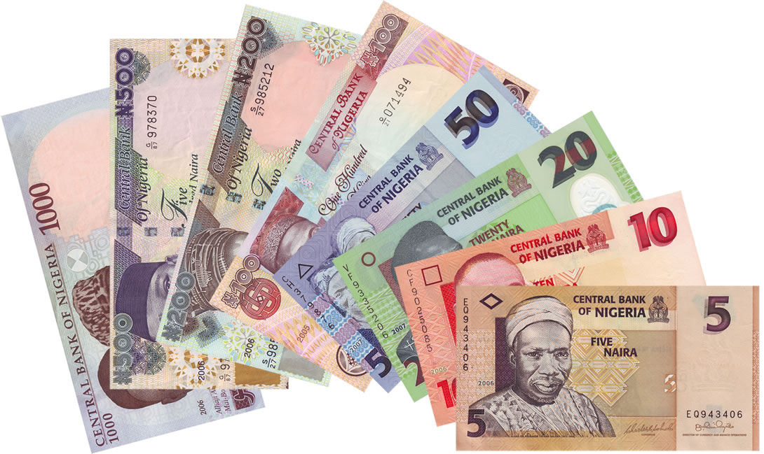 Image result for image of naira