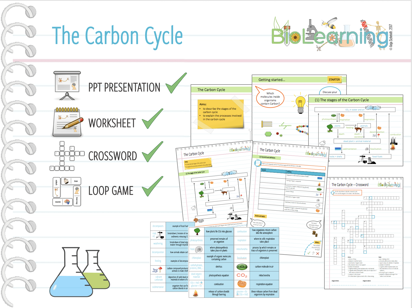 4x Carbon Cycle