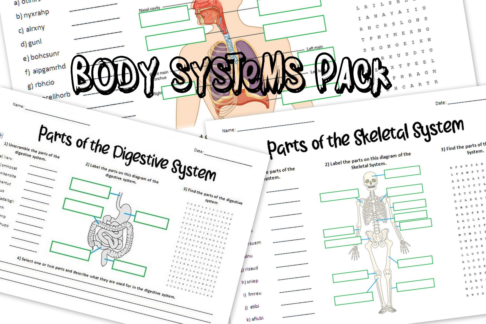 Human Body Systems Puzzle Worksheets Pack
