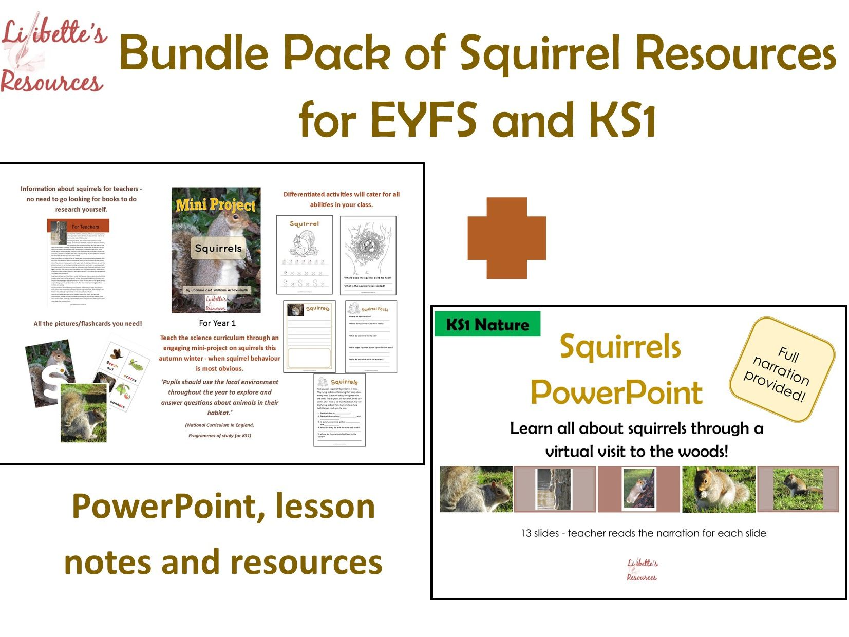 Squirrels Powerpoint And Lesson Notes Worksheets Ks1