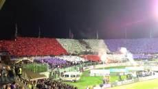 Siviglia - Fiorentina, Toc Toc Firenze