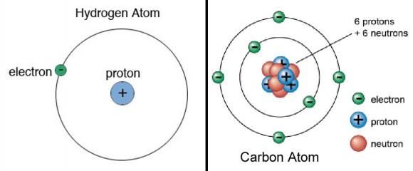 Los átomos están hechos de protones, neutrones y electrones en órbita.  El número de protones en el núcleo del átomo lo hace único de todos los demás.  El hidrógeno, el elemento más simple, tiene uno mientras que el carbono tiene seis.
