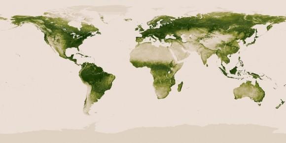 La vegetación de la Tierra.  Mapa del mundo de la vegetación crea con datos Suomi NPP.  Crédito: NASA / NOAA