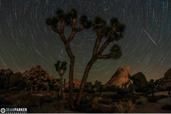 Perseidas más de Joshua Tree.  Esta es una imagen compuesta compuesta de 180 fotogramas de una secuencia timelapse estática, apuntando hacia la estrella polar.  Tomado el 9 de agosto de 2013.  Crédito y copyright: Sean Parker / Sean Parker Fotografía.