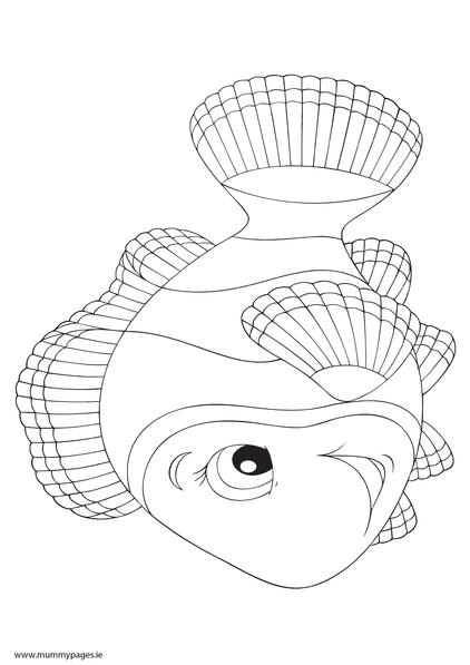fish nemo colouring page to download it just click the quot download pdf