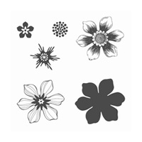 Beautiful Bunch Clear-Mount Stamp Set