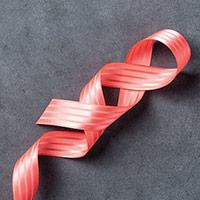 "Watermelon Wonder 1"" Stitched Satin Ribbon"