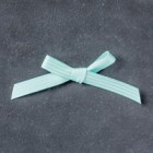 "Pool Party 3/8"" (1 Cm) Stitched Satin Ribbon"