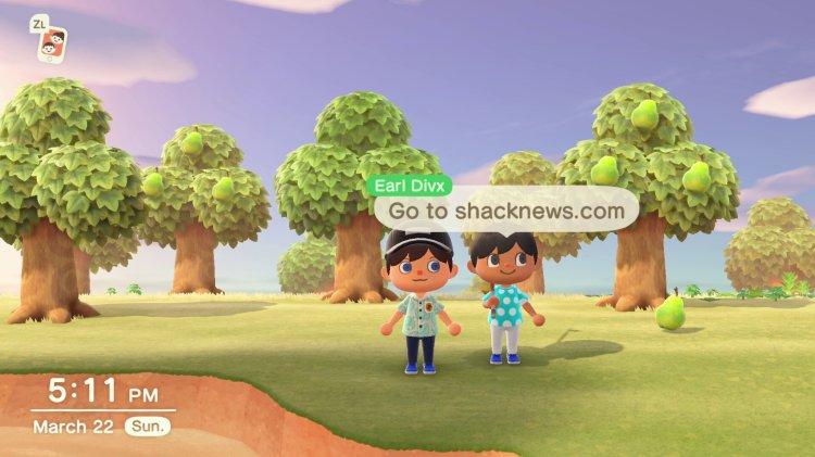 Hat Animal Crossing: New Horizons einen Koop-Multiplayer?