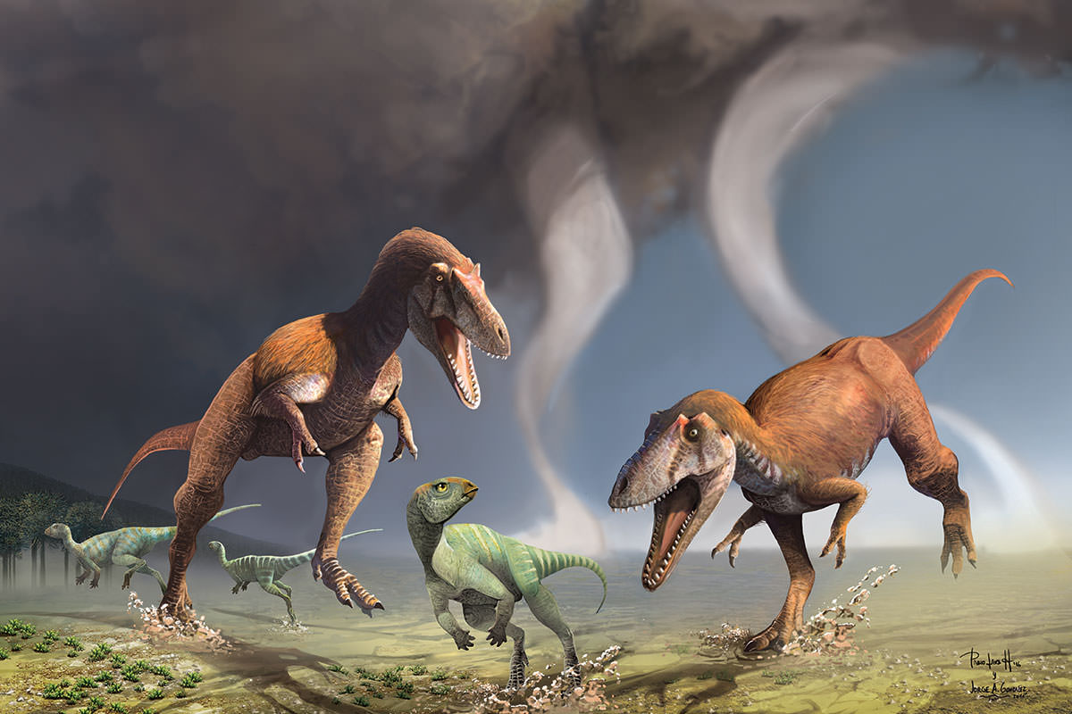 T Rex Lookalike Suggests That Tiny Arms Developed For A