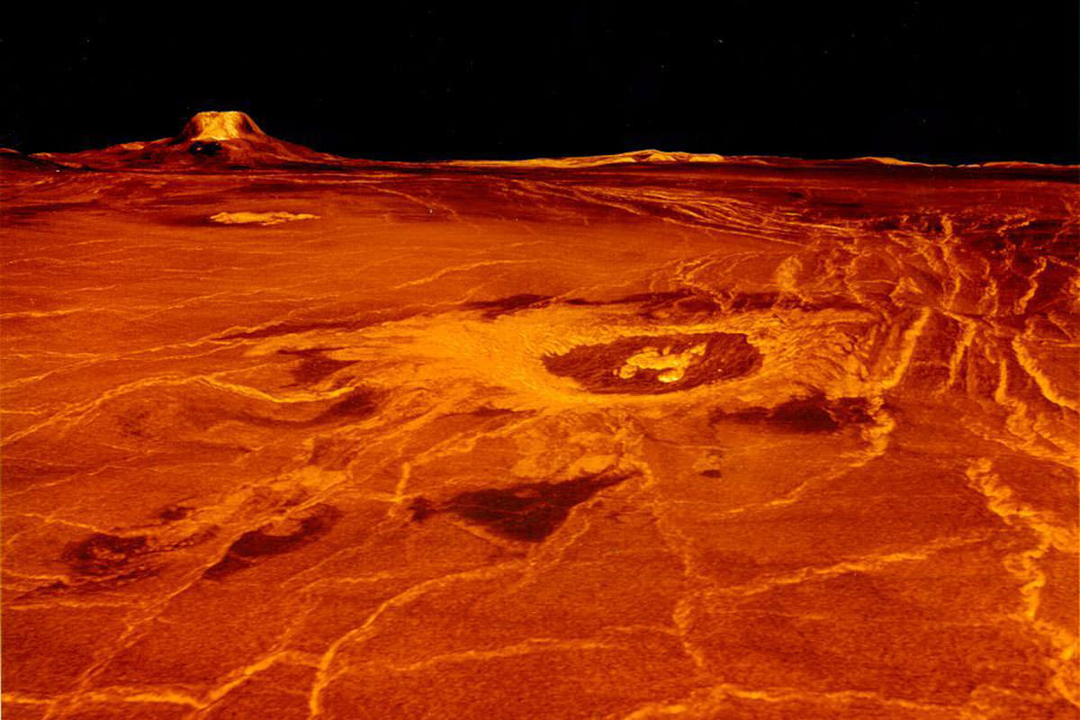 Venus Could Have Been Habitable While Life Evolved On