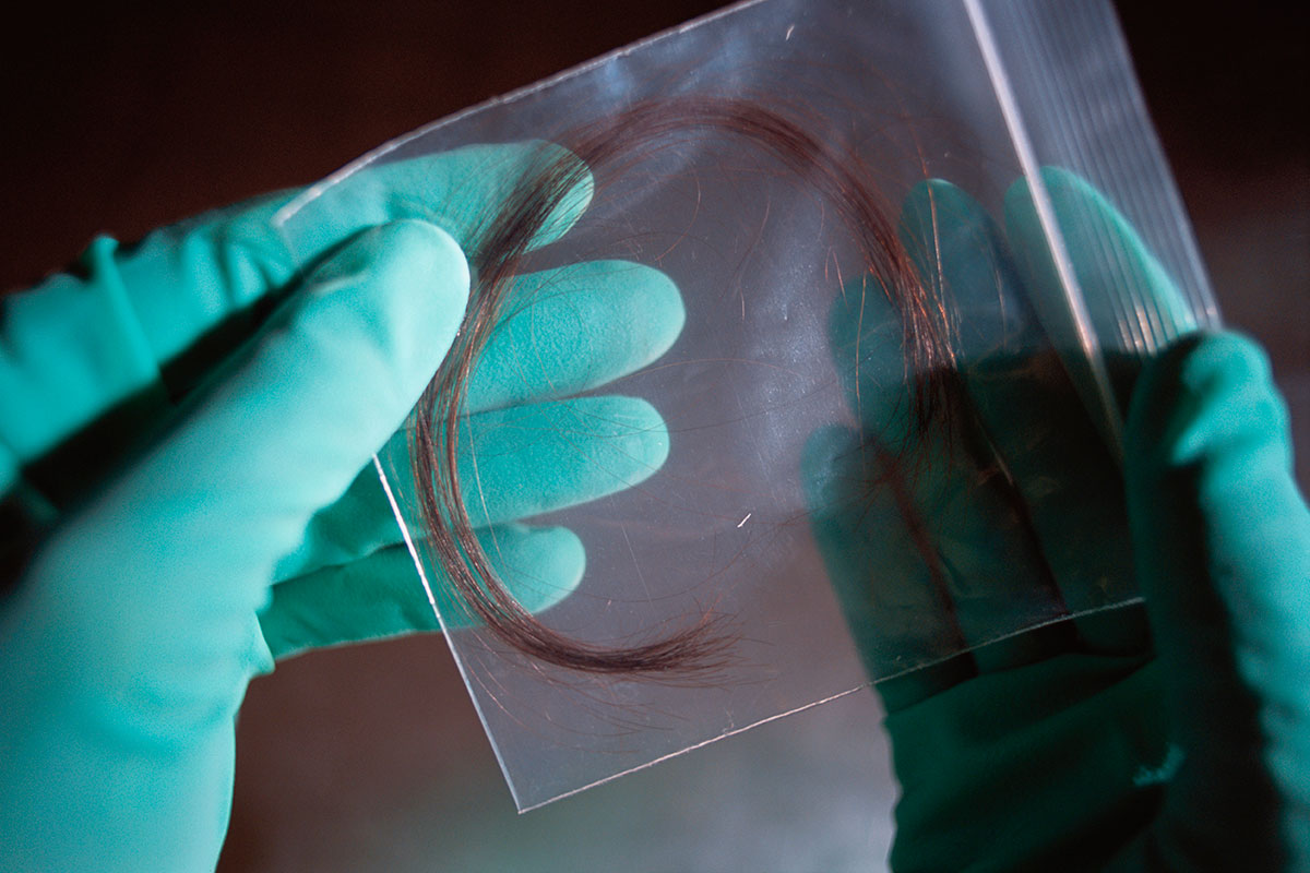 Your Distinctive Hairprint Can Identify You Even When Dna
