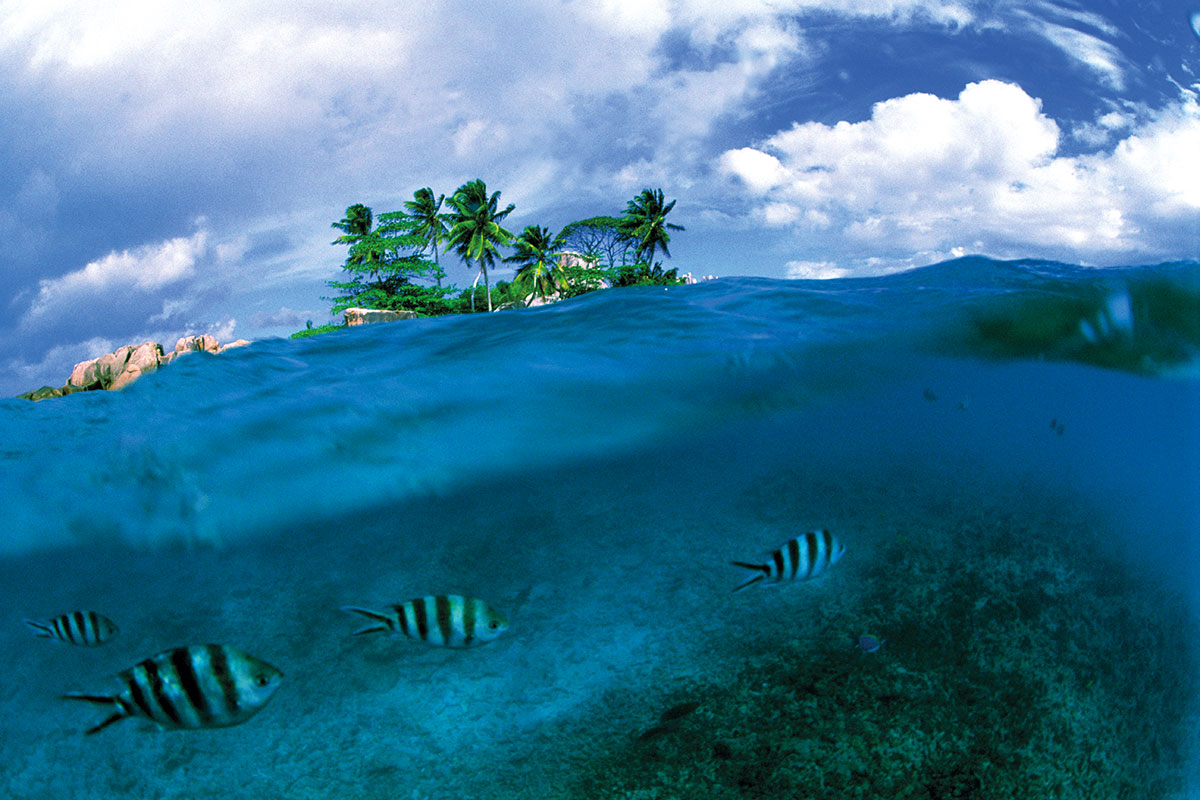 What We Re Doing Now Will Make The Ocean Completely