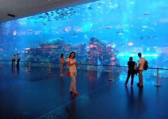 Dubai Mall, Aquarium & Underwater Zoo