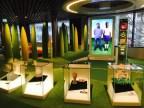 Zurich Museums Night, FIFA World Football Museum