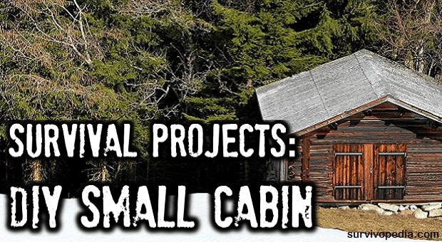 big diy cabin