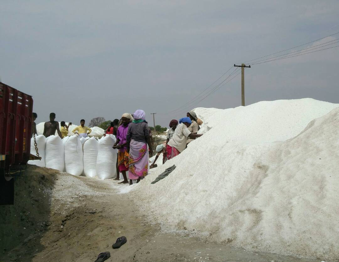 Worker at the salt plant in Alamparai. Photo credit: Vinita Govindarajan.