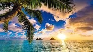 Sunny paradise in Hawaii