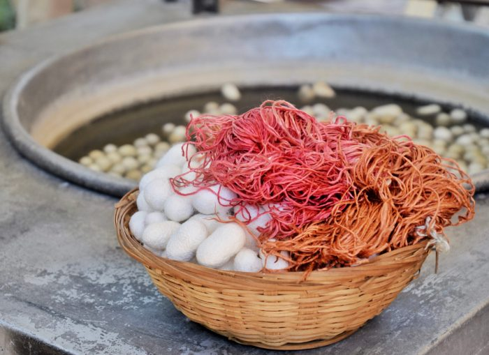 white cocoons in a basket with pink and orange dyed yarn. Cocoons sit floating in a washtub in the background.