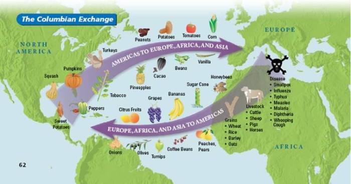 This image shows the various crops that were exported to Europe from America, and to America from Europe during the Columbian Exchange. The Columbian Exchanged the nutritional values on both continents.
